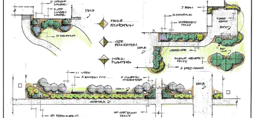 landscape design - watkins nurseries