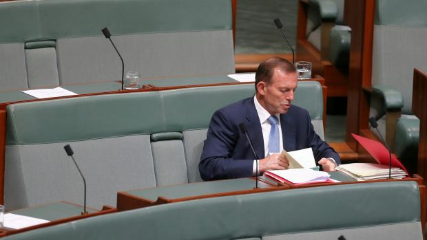 Tony Abbott has yet to announce whether he will recontest his seat in this year's election.