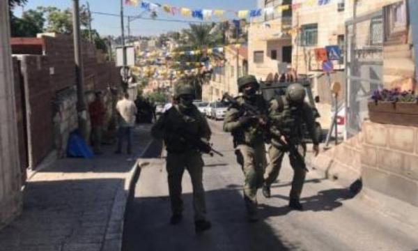 الاحتلال يعتقل المواطنة أمل بني مينا من بلدة عقربا جنوب نابلس