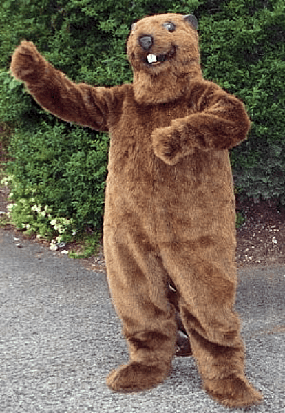 & Sasquatch Halloween Costume