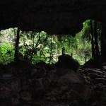 Los mágicos Cenotes.