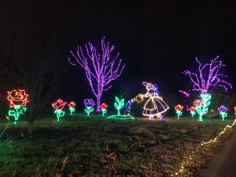 Photos Dominion Energy Garden Of Lights Opens At Norfolk Botanical Garden Wavy Com