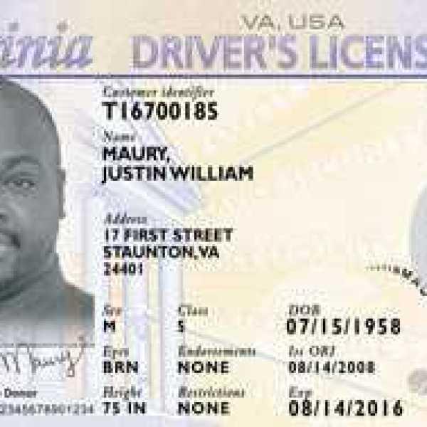 virginia dmv driver's license_239937