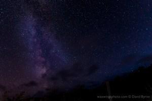 Stars near Vik