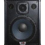 Wayne Jones Audio - 1000 Watt 1x10 Powered Bass Cabinet