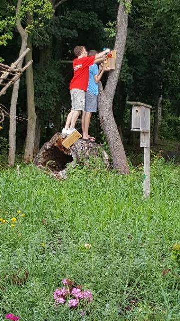Sean and Cooper hanging bird feeders