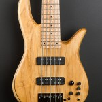 Play-a-Fodera-bass-@-Wayne-Jones-AUDIO-2