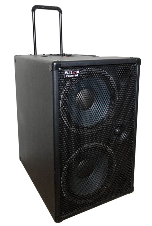 1000 Watt Compact, Portable High End, High Powered, Crystal Clear, Full Range 2×10 Bass Guitar Cabinet
