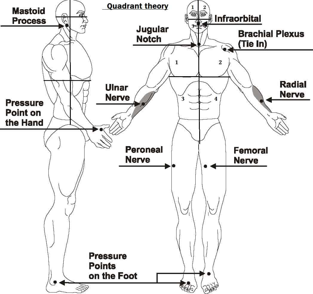 foot pulses diagram yamaha gas golf cart solenoid wiring pressure points for combat tenketsu jutsu way of ninja
