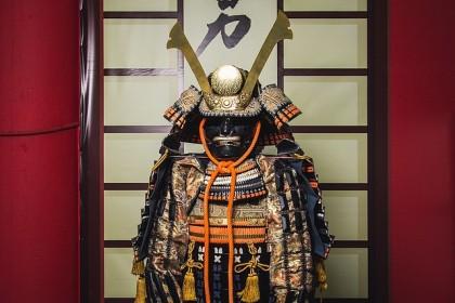Ninja were mainly from the samurai class
