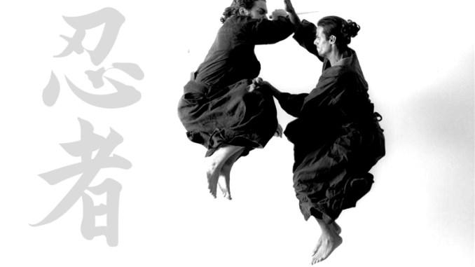 Modern ninja martial arts