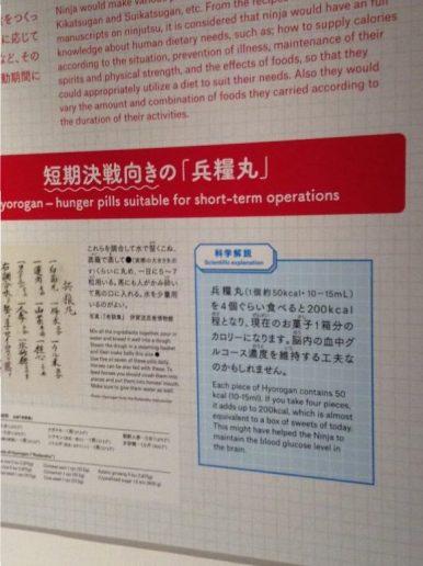 Hyorogan - hunger pills suitable for short-term operations