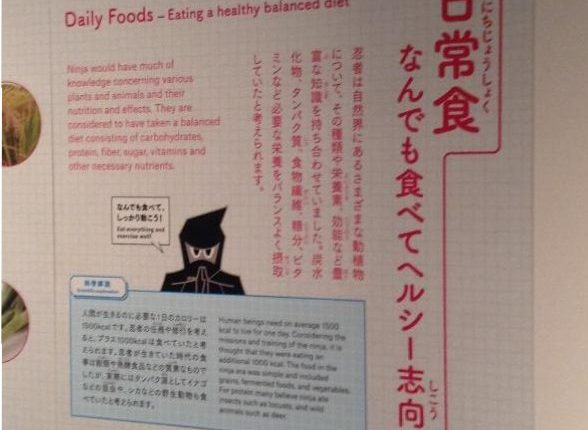 Daily Foods – Eating a healthy balanced diet – Ninja