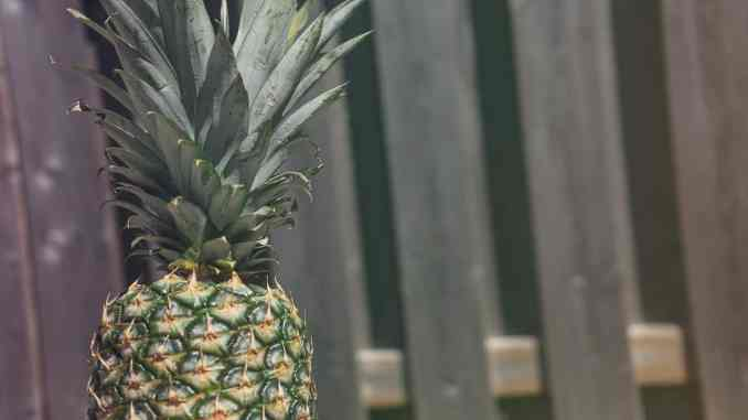 Pineapple - Living with an Autoimmune Disorder