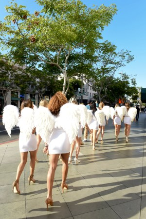 Angels in Training - Gran Centenario