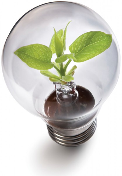 Go Green With LED Lighting Solutions Ways2GoGreen