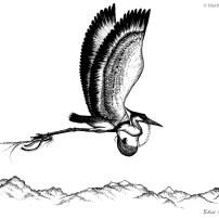 dessin-reve-heron_l