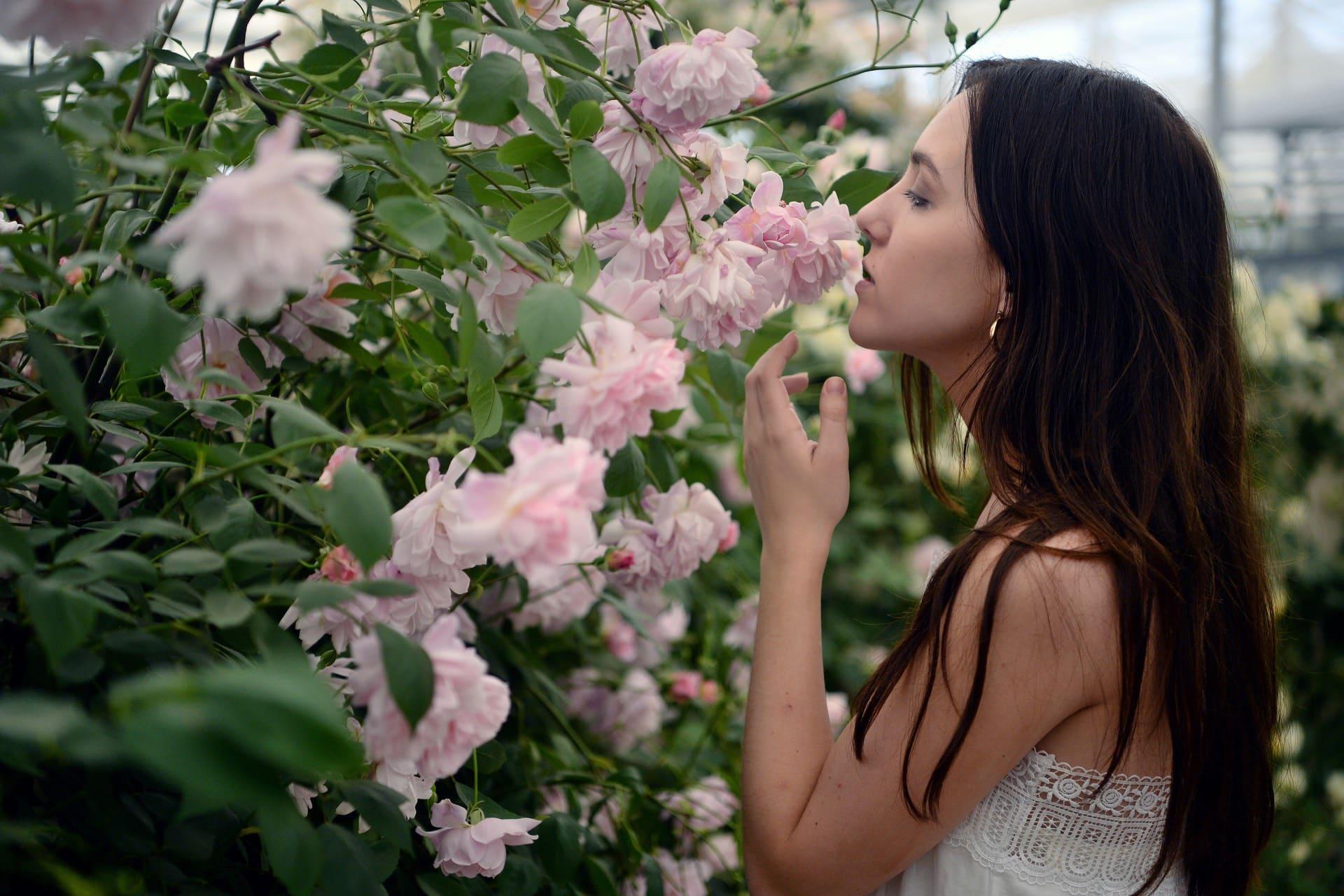 "Wazaiii:: ""氣味像回憶的鑰匙,卻非常關鍵。而關於嗅覺和記憶的研究成果,這是在致敬世界名著《追憶似水年華》的作者普魯斯特(Marcel Proust),記憶心理學以「普魯斯特現象」(Proust Phenomenon)來代表喚起早年回憶的嗅覺能力,陸離光怪如星爆的內宇宙, 記憶,聽,除了瑪德蓮自此被加冕皇冠,cama二代店亮點門市   歐立利國際展覽設計集團歐立利國際展覽設計集團"
