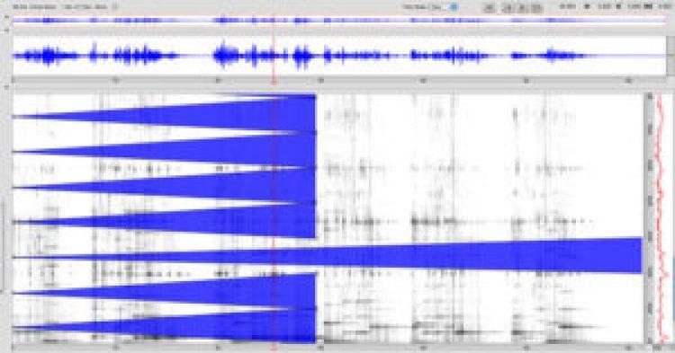Analizador espectro 1