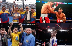 Boxing feast with four WBA titles