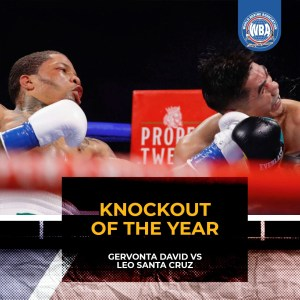 Gervonta-Santa Cruz was the Fight of the Year and the KO of the Year