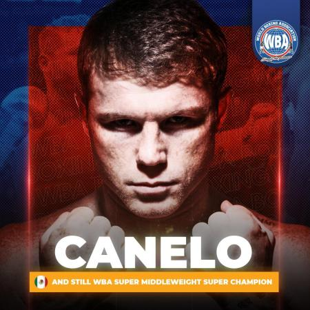 Canelo demolished Yildirim and retained his WBA Super Championship