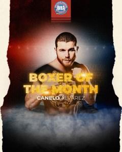 Boxeador AMB del Mes