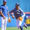 New York Mets Farm System
