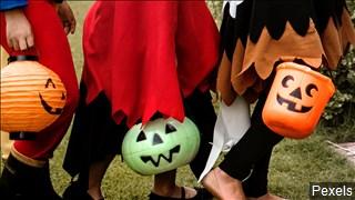 halloween photo_1541019317125.jpg.jpg
