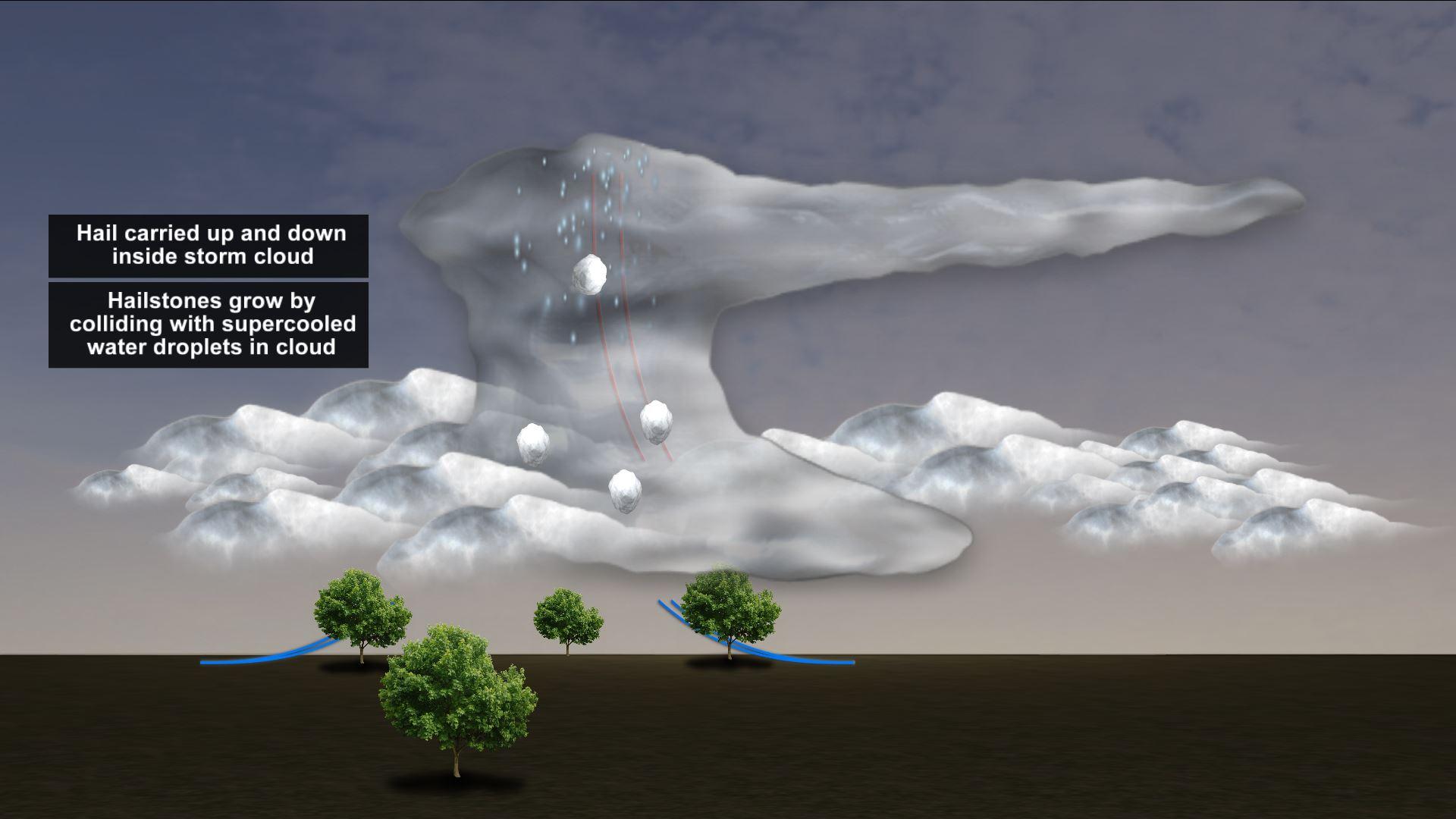 hail3_1553167092671.JPG