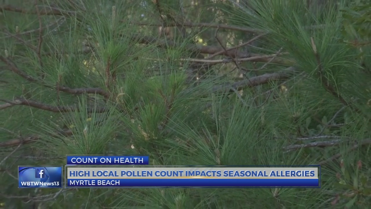 What you need to know about rising pollen counts