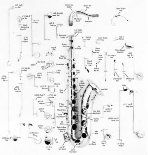 Tonehole diagram to identify each note