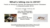 Facts On Mosquito Activity and Mosquito-Borne Diseases In MA in 2018