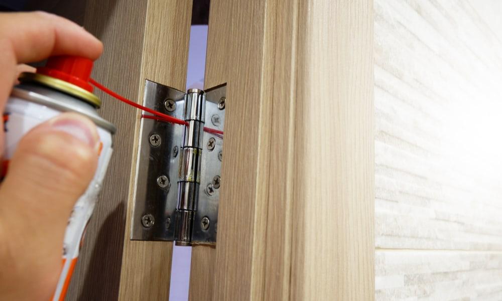 10 best lubricant for door hinges of