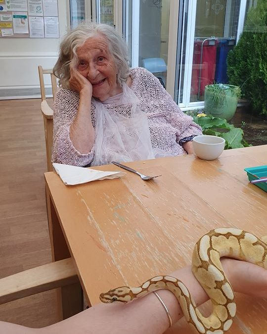Royalty at Stour Road Care Home