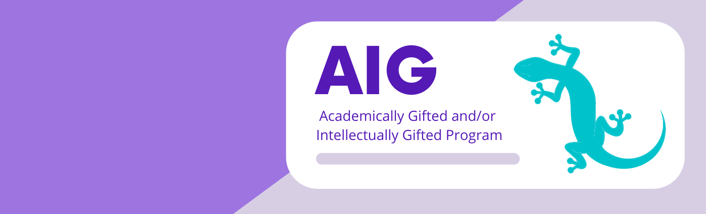 Academically and/or Intellectually Gifted / Overview
