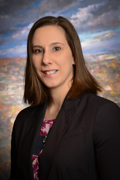 Lisa Sparks Co Presents At The Fidelity And Surety Law Committee