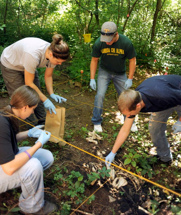 Anthropologist Forensic Anthropology