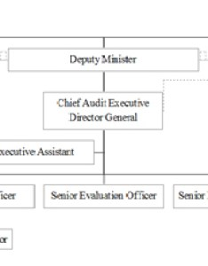 Audit and evaluation branch  organizational chart also governance rh wd deo gc