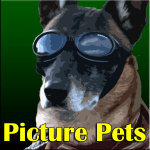picturepets