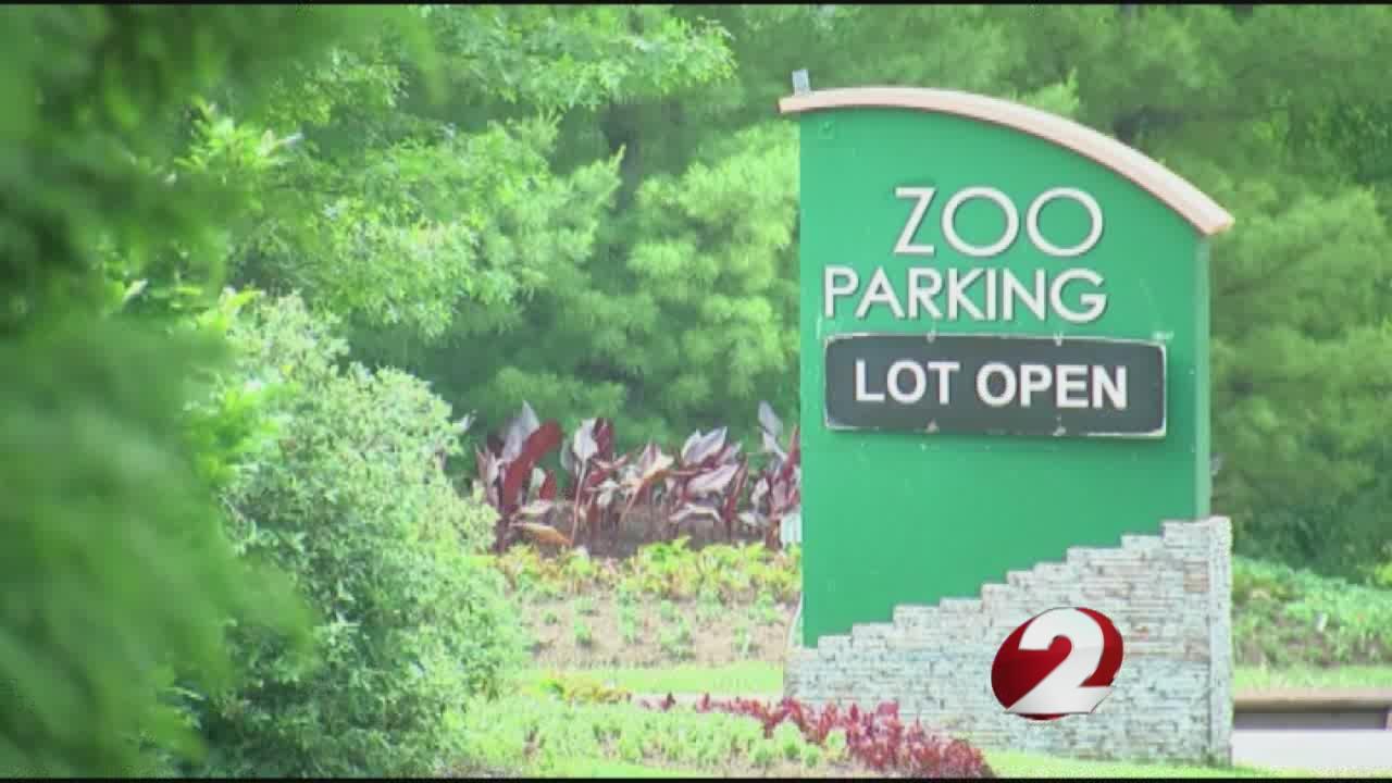 Cincinnati Zoo director defends killing gorilla to save boy_162988