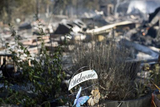 California Wildfires_255608