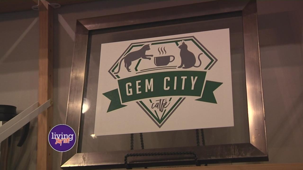 Gem City Catfe_289766