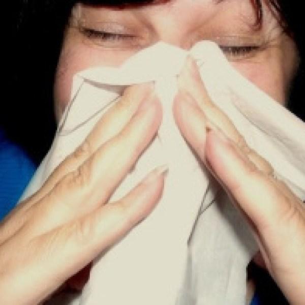 sneeze_in_white_hankie_704263-846653543
