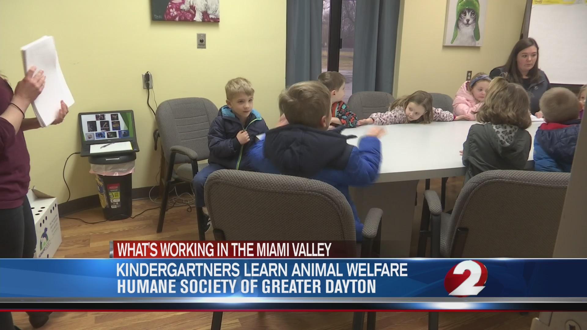 Kindergartners learn animal welfare