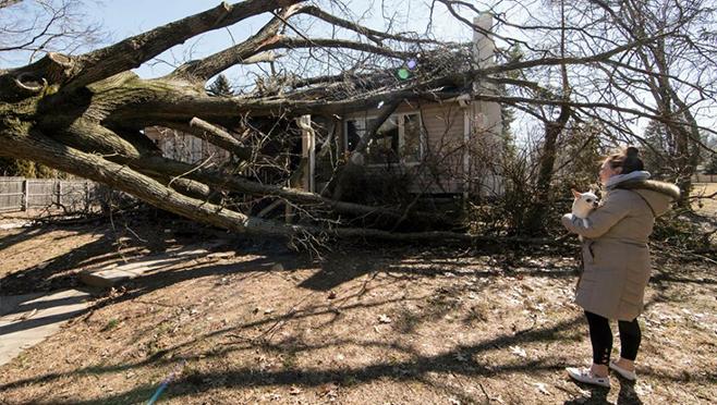 windy wx damage_1552590040402.jpg.jpg