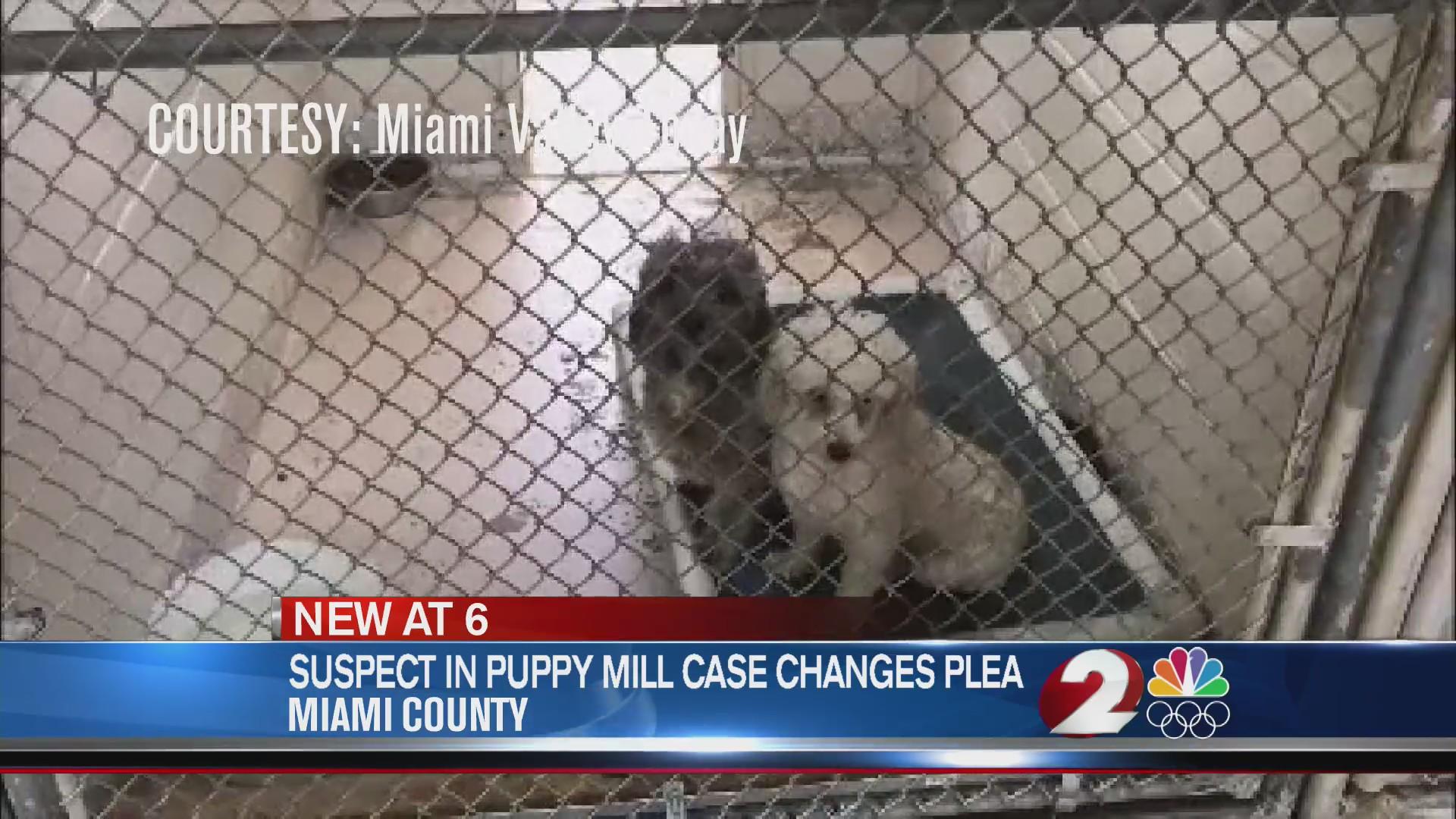 Suspect in puppy mill case changes plea