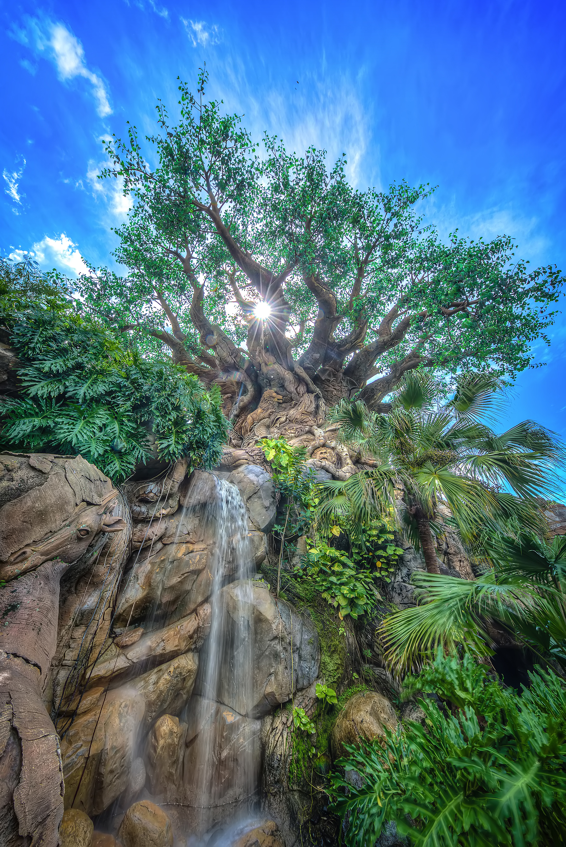 The Best Animal Kingdom Pictures