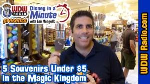 5-souvenirs-magic-kingdom-disney-world