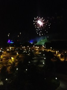 Wishes from the Contemporary Resort